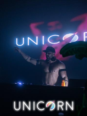 Unicorn4.jpg