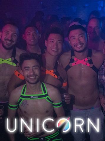 Unicorn29.jpg