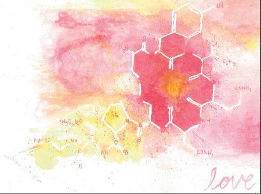 Oxytocin: for the love of birth