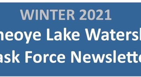 HLWTF Newsletter, Aeration Planning Project, 2020 Water Quality, Hemlock Woolly Adelgid (Click Here)