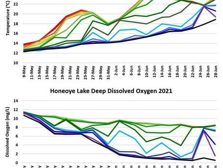 Monday June 28th 2021 Honeoye Lake Water Quality