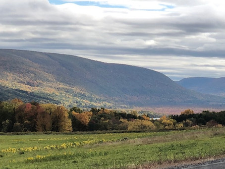 October 12, 2020 Honeoye Lake Update is our final update for the 2020 season (Click Here)