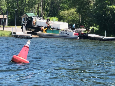 Monday June 21st, 2021 Honeoye Lake Water Quality