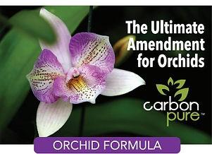 Orchid%2520Formula_edited_edited.jpg
