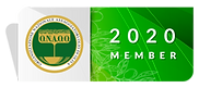 2020-logo-eng.png
