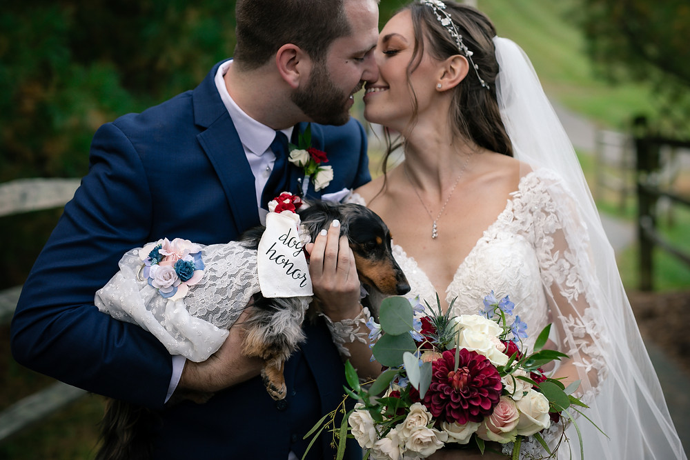 Bride and Groom with dog at Bear Creek Mountain Wedding