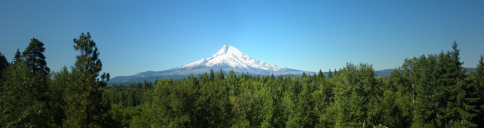 mount-hood-rising-beyond-the-forest-oreg