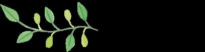 Maturashirts, Bio, Fair trade, nachhaltig, Shirts, Matura, Abschluss