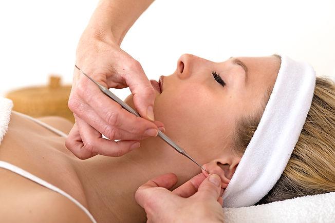 OAM, Ohr-Akupunkt-Massage, Gabriele Karner, Waldzell
