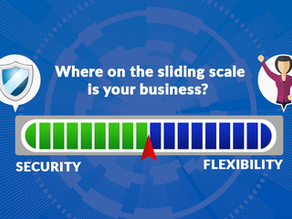 Security or Flexibility: Which Matters More?