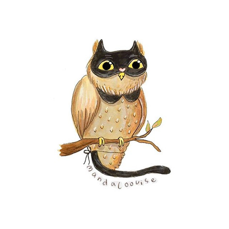 Day 19 - Black Cat Owl