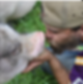 Screen Shot 2019-05-21 at 11.49.12 AM.pn