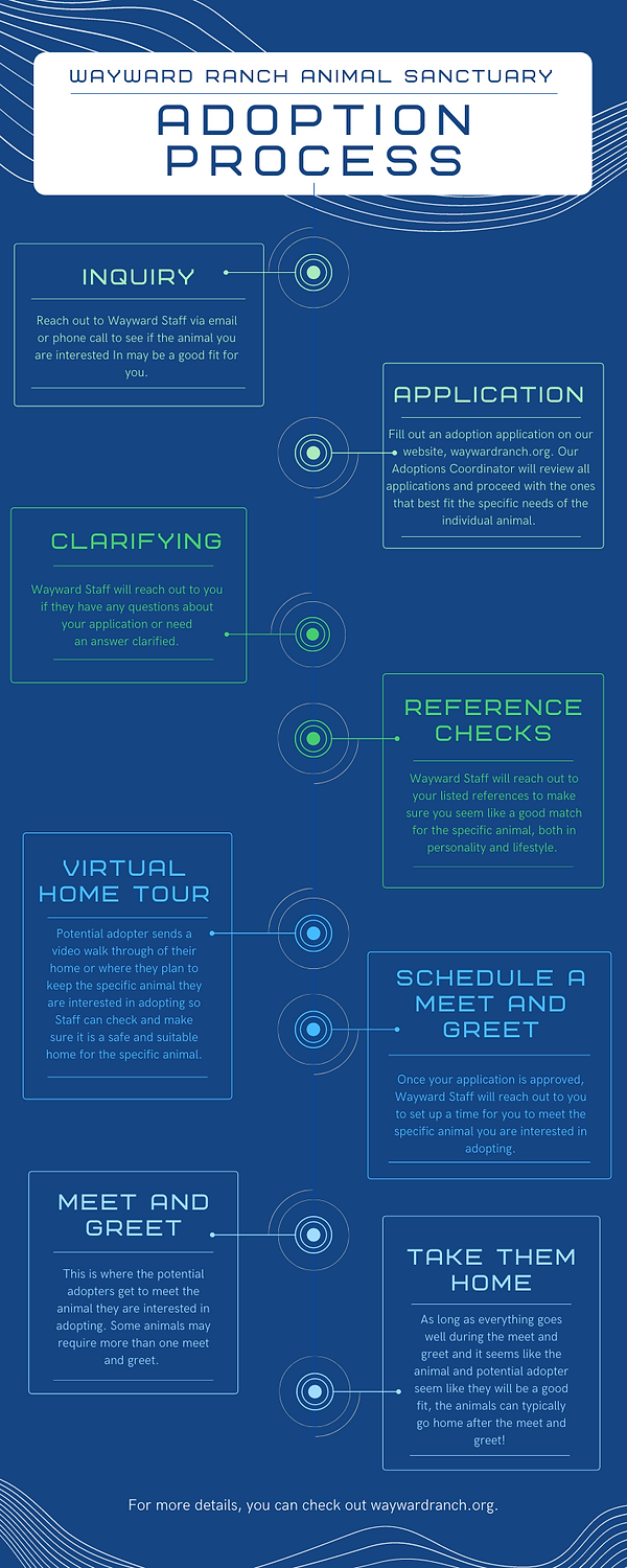 Yellow Green and Blue Futuristic Organization Process Timeline Infographic.png
