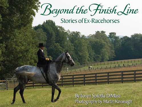 Beyond The Finish Line: Stories Of Ex-Racehorses