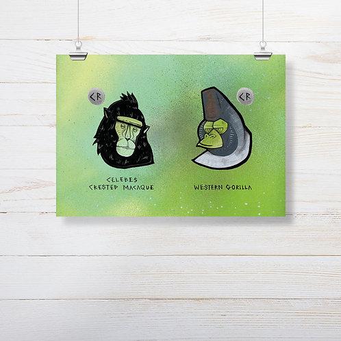 Kieran Page 'Macaque X Gorilla' A4 Print