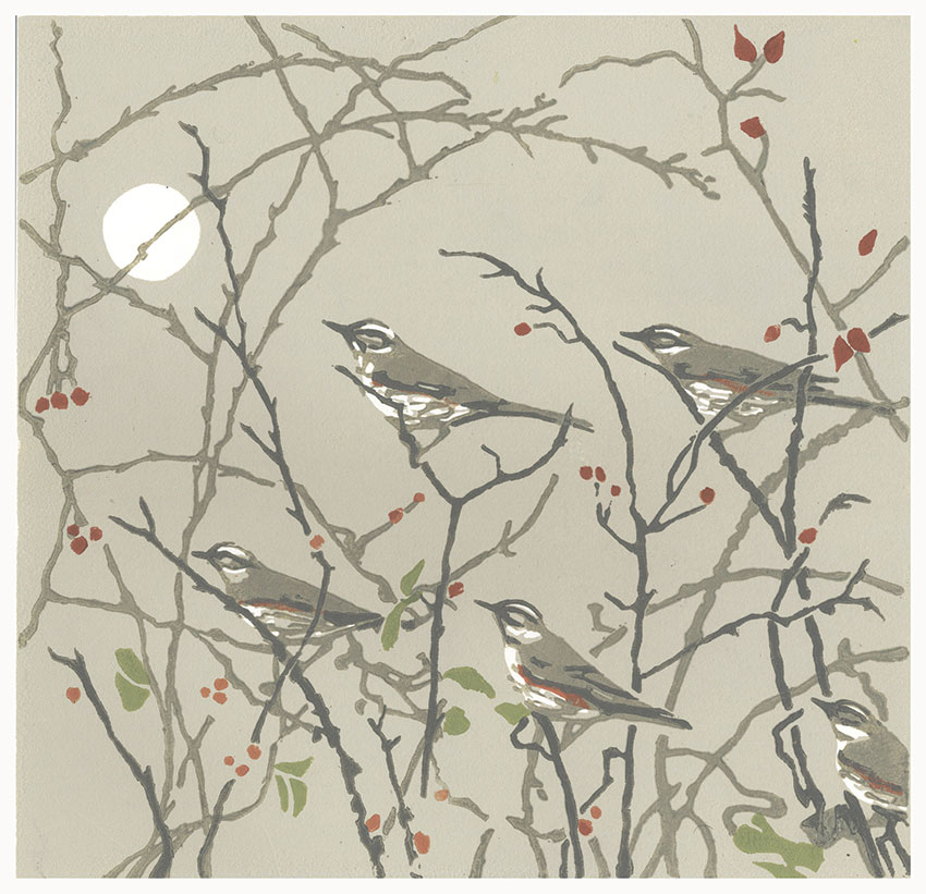 Evening-Redwings