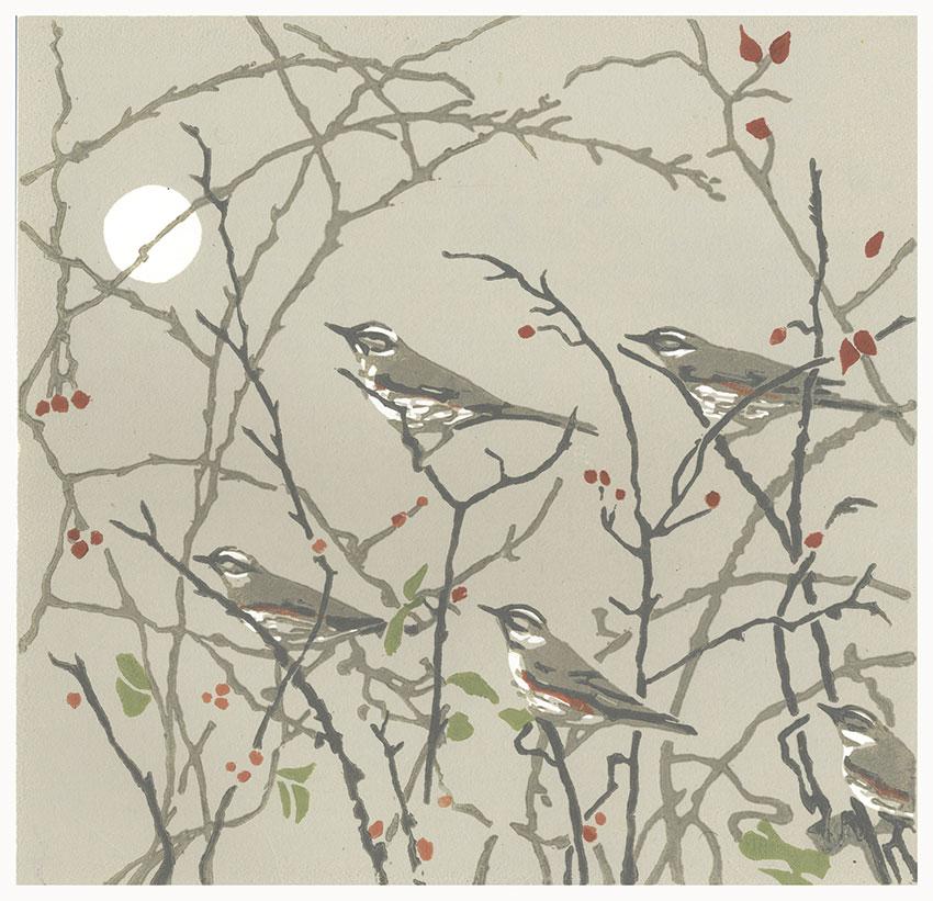 Evening-Redwings