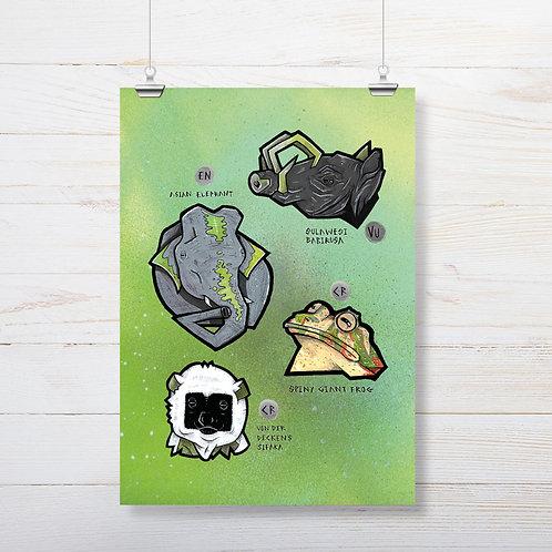 Kieran Page 'Babirusa' A3 Print