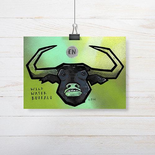 Kieran Page 'Wild Water Buffalo' A5 Original Artwork