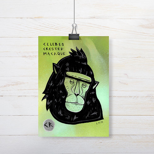Kieran Page 'Celebes Crested Macaque' A5 Original Artwork