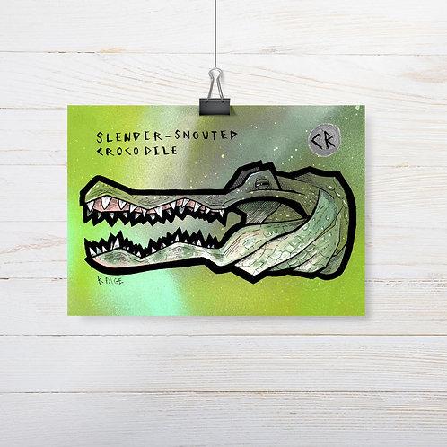 Kieran Page 'Slender-Snouted Crocodile' A5 Original Artwork