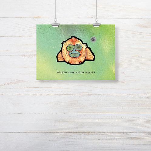 Kieran Page 'Golden Snub-Nosed Monkey' A5 Print