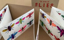 John-Dilnot-Book-of-Flies