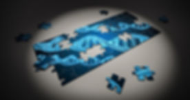 DNAパズル.jpg