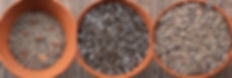 potting combi 3.jpg