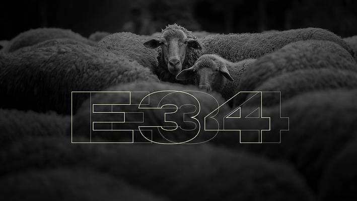 E34 (2).png