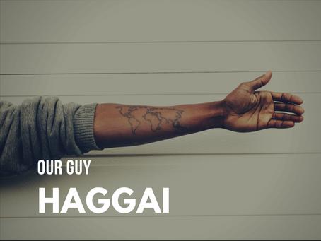 Our Guy Haggai
