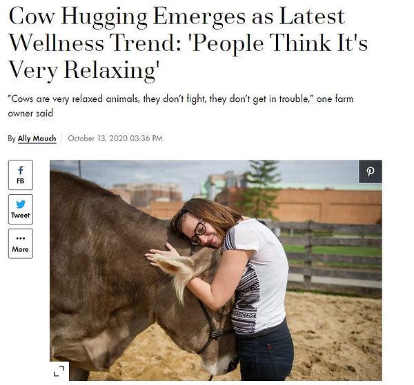 cow hug.JPG
