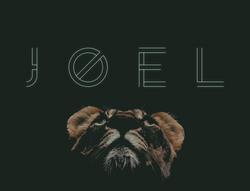 Joel color.png