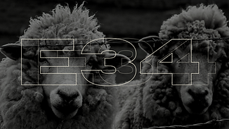 E34 (3).png