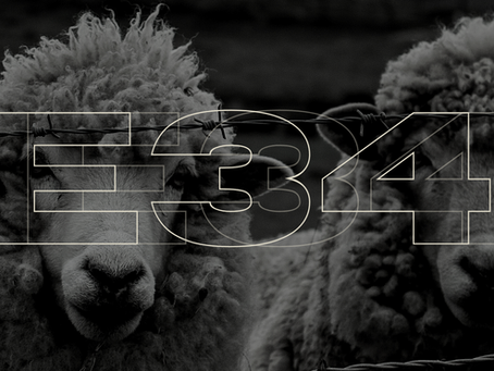 E-34: The Right Shepherd