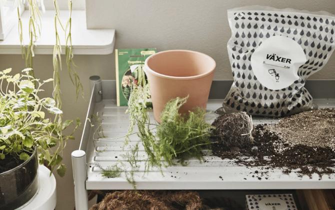 Ideas geniales para cultivar plantas y hortalizas en un huerto en casa.