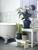Descubre las plantas para el baño que decoran por sí mismas.