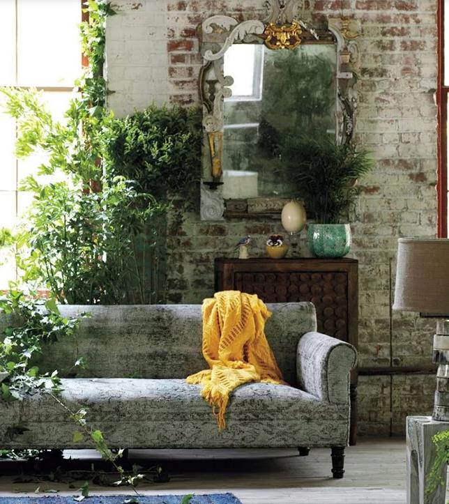 ¿Sabes cuál es el mejor sitio para colocar tus plantas en casa?