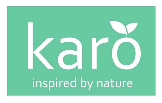 Karo Logo 1.png