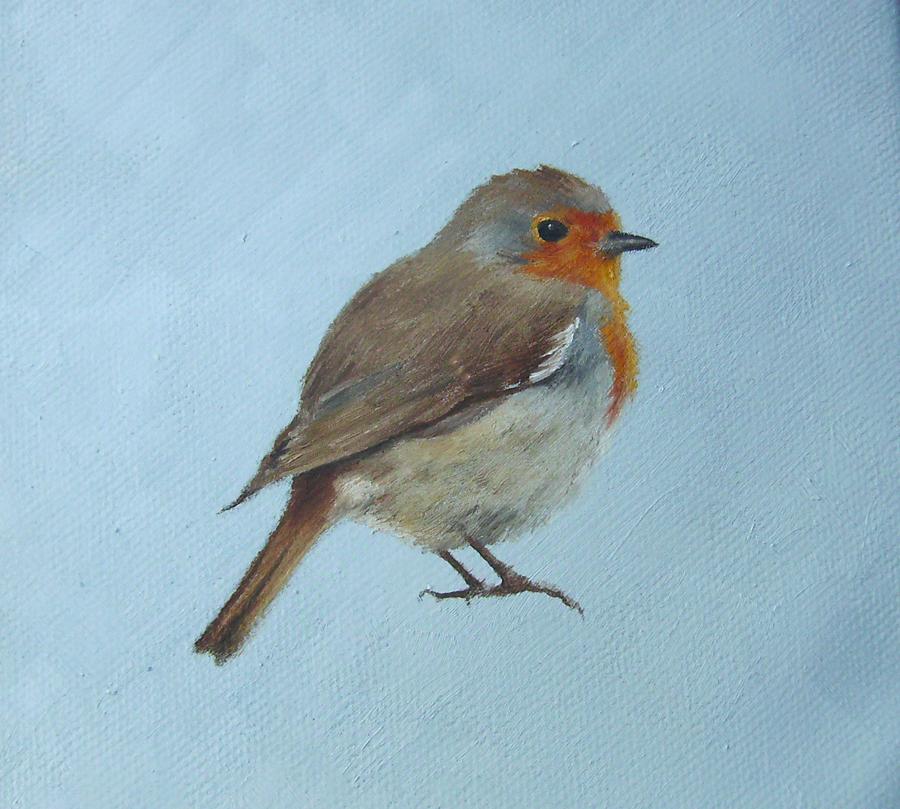Robin on Blue