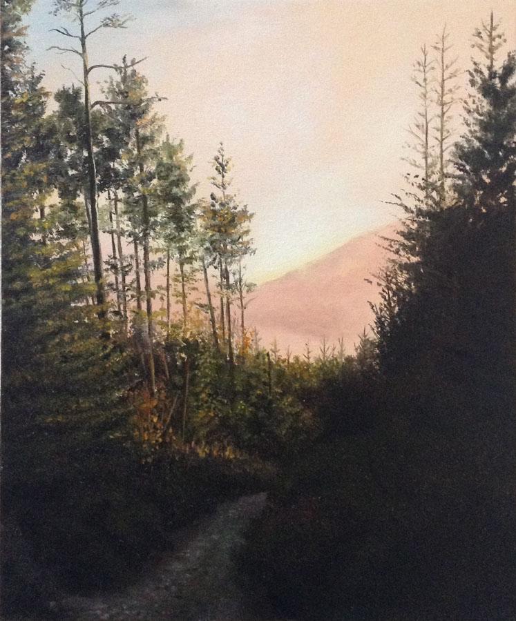Evening Light, Bennachie