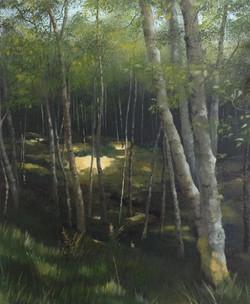 Bright Spot, Glenesk