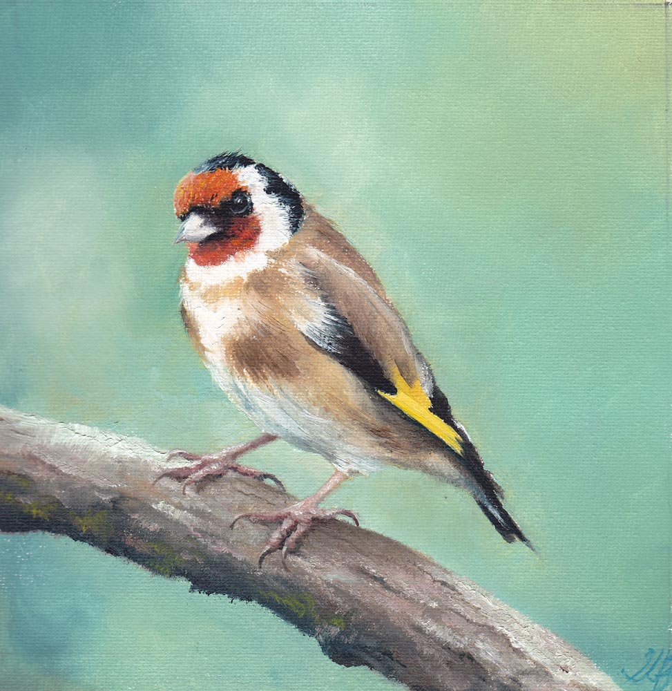 Goldfinch on a Branch