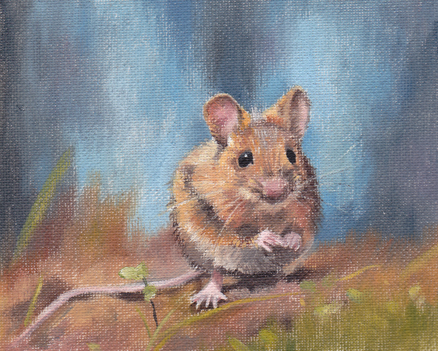 Mouse on Blue