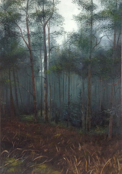 Millstone Hill Woods