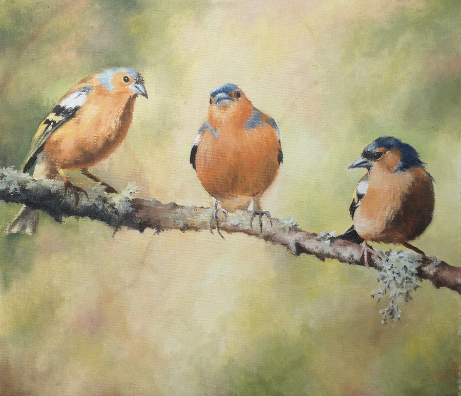 The Three Chaffinches
