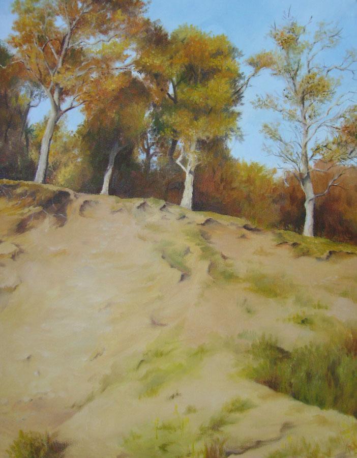 Autumn Trees, Glenesk