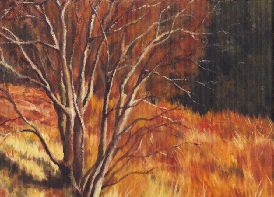Autumnal Blaze