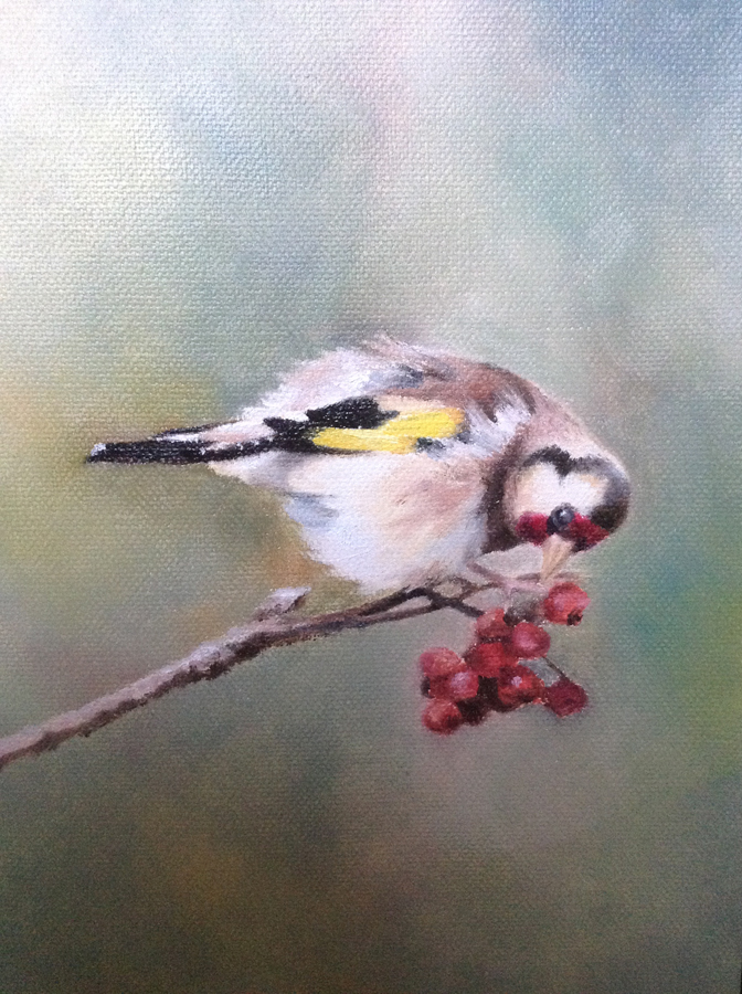 Goldfinch with Red Berries