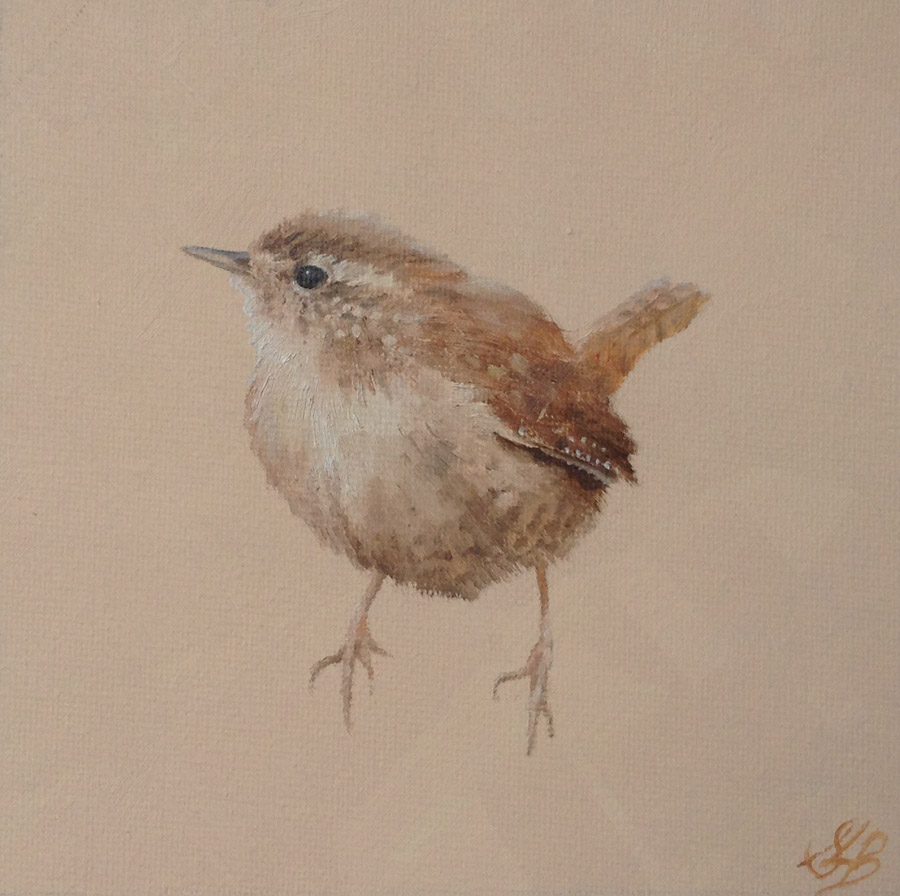 Wren on Light Brown
